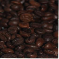 CAFÉ ROBUSTA