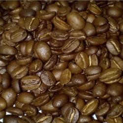 CAFÉ INDIA MYSORE